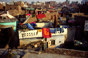 India - New Delhi - Slum rooftops of Shadipur Depot