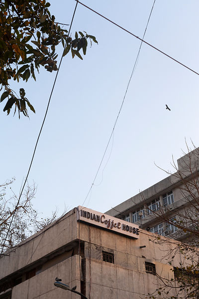 India - New Delhi - A kite flies over the Indian Coffee House