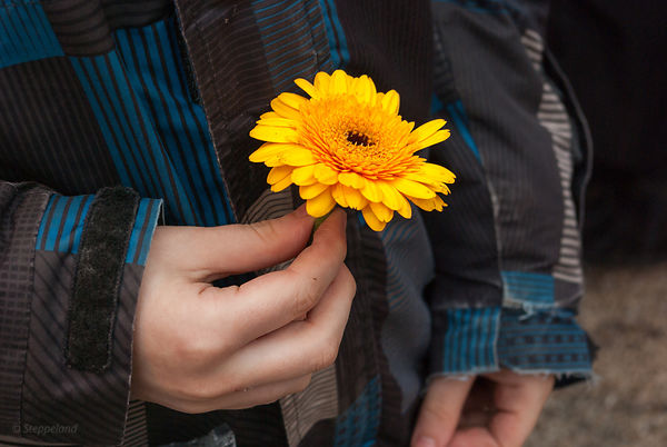 A child holds a single flower