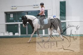 BHS, Aintree riding club