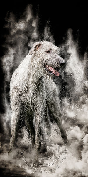 Art-Digital-Alain-Thimmesch-Chien-97