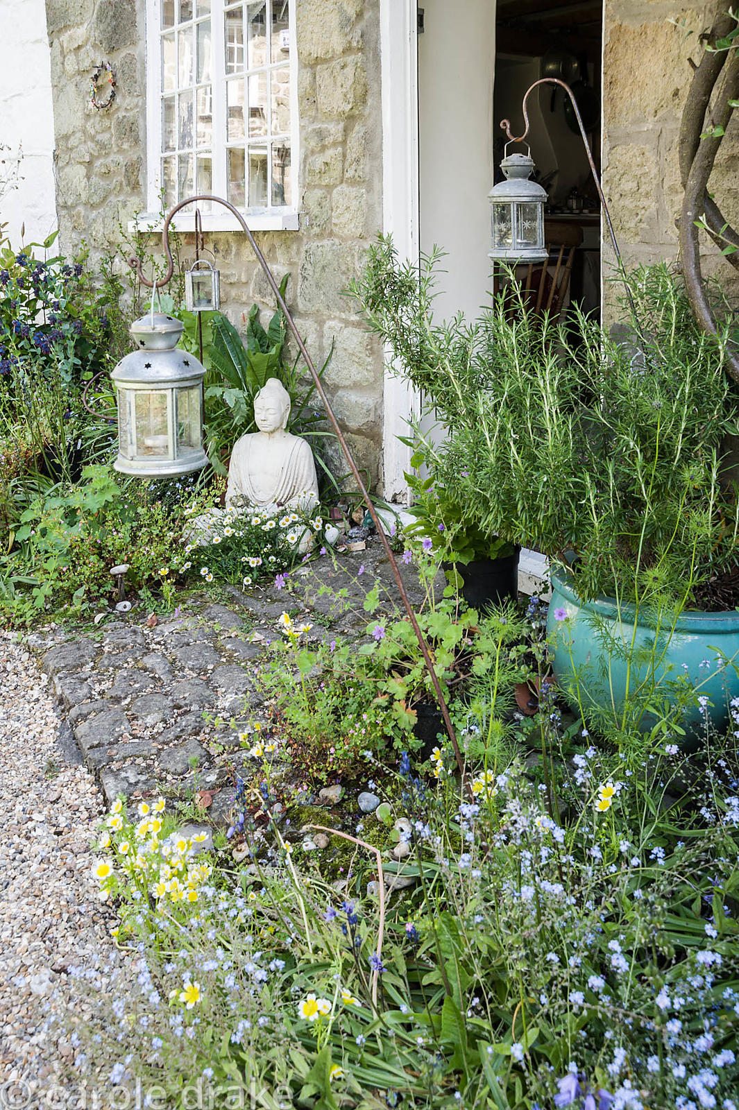 Insect friendly plants around Brigit Strawbridge's front door in the historic Pump Yard include forget-me-nots, Limanthes dou...