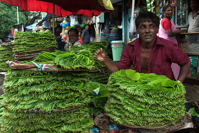 Betel leaves at a market stall in Mahim, Mumbai, India.