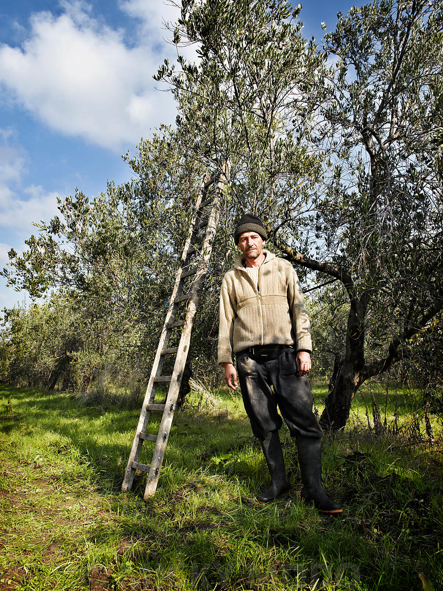 olive_picker_molise_portrait_II