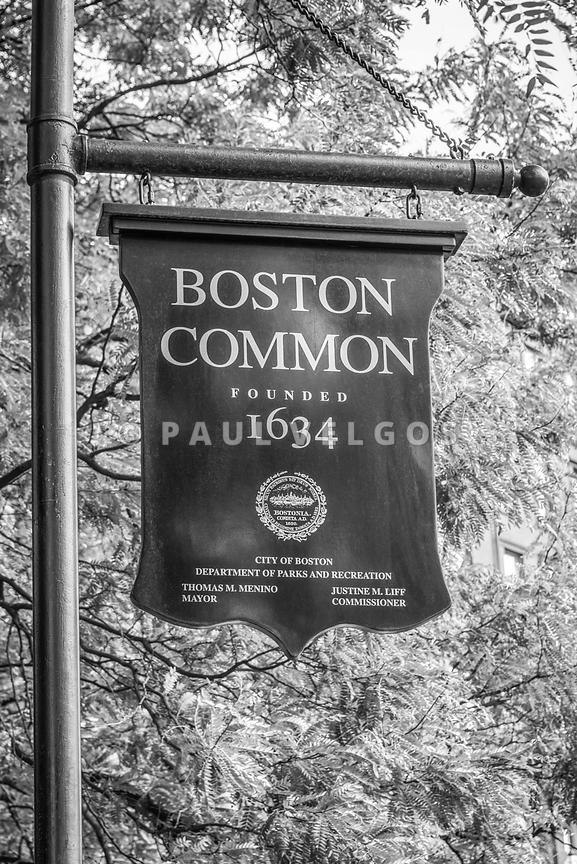 Boston Common Sign Black and White Photo