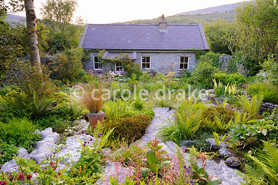 View down to the cottage in the back garden over limestone outcrops with planting pockets containing ferns, grasses, hellebor...