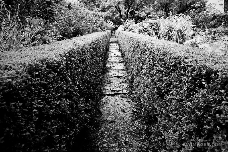 SHAKESPEARE GARDEN EVANSTON ILLINOIS BLACK AND WHITE
