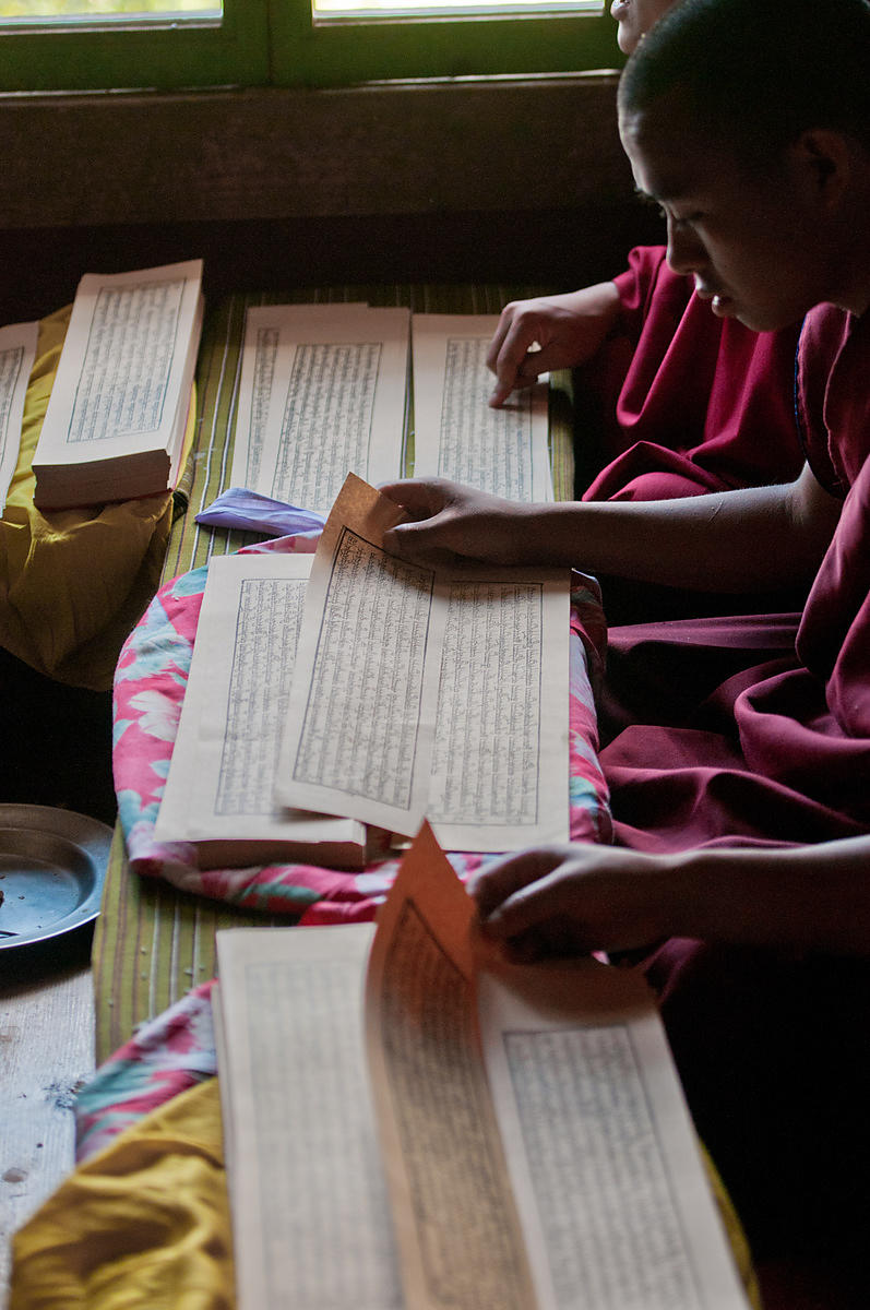 Young monks read the buddhist scriptures.