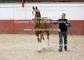SEAHG Classes 12, 13 & Championship D