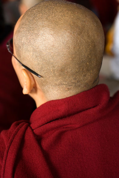India - Sarnath - Detail of a shaved head of a disciple listening to a lecture by The Karmapa Lama at the Vajra Vidya Institu...