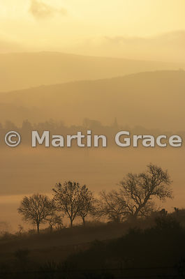 Early morning mist in the Lyth Valley, with Levens Church spire, November 17, Cumbria, England