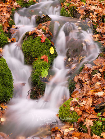 Falls_with_green_moss