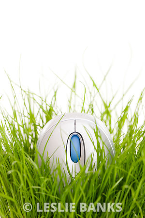 Computer mouse in grass