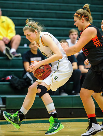 PC - Girl's Prep Basketball, Iowa City West vs West Des Moines Valley, January 24, 2015