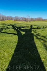 Tree Shadows Crossing Mounds of Hopewell Culture National Historical Park