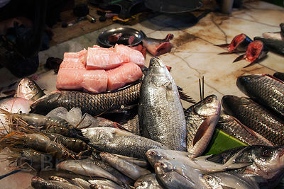 Fish being processed at a fish market in Shyambazar, Kolkata, India.