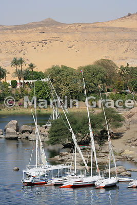 The River Nile at Aswan, Egypt, with feluccas (sailing boats) and the desert beyond
