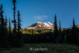 Mt. Adams from Killen Creek along the Pacific Crest Trail