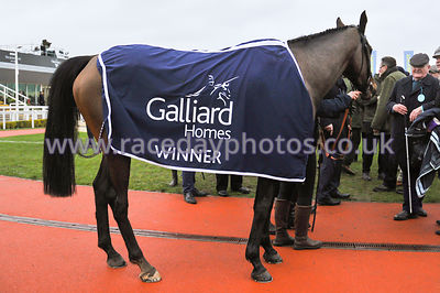 Galliard_Homes_rug_shot_260119