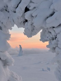 Vinter / Winter in Trysilfjellet, Norway