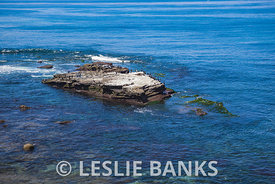 Seal Rock in La Jolla Beach