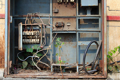 Disused electrical box with plants growing inside of it, Haridwar, India