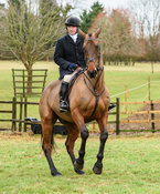 Mike Chatterton at the meet at Eaton Grange. The Belvoir Hunt at Eaton Grange 7/2