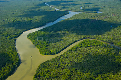 Aerial view of lowland rainforest and Kinabatangan River and tributaries, Sabah, Malaysia  2007