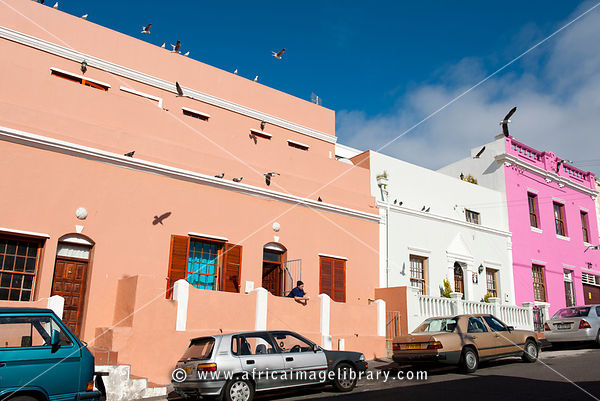 Cape Malay woman feeding guls, Dorp Street, Bo-Kaap, Cape Town, South Africa