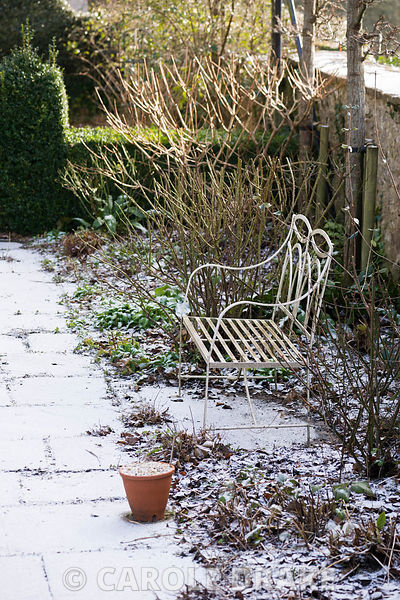 White metal bench beside a stone path dusted with snow.