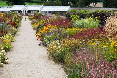 Double herbaceous borders planted with predominantly hot colours lead toward renovated Victorian greenhouses. Key plants incl...