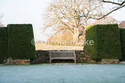 Bench sited against the boundary wall of the back garden, framed by large yew hedges and surrounding countryside beyond.