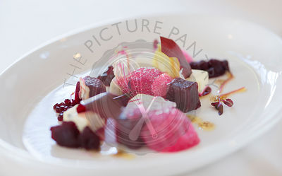 Textures of Beetroot with blue cheese panna cotta.