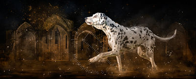 Art-Digital-Alain-Thimmesch-Chien-669