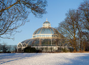 Sefton Park Palmhouse in Snow