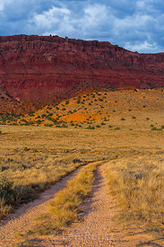 Two Track Road in Vermilion Cliffs National Monument