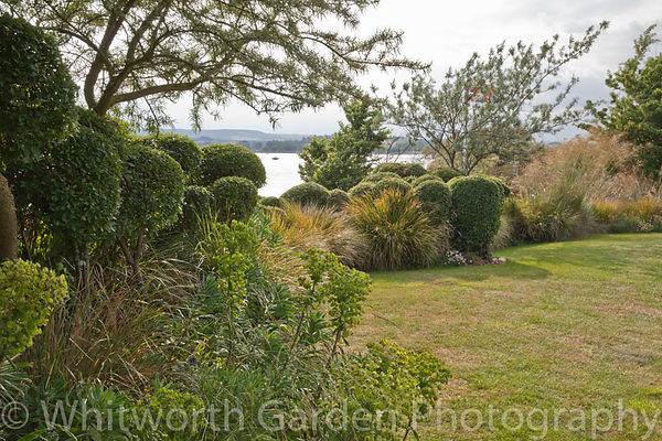 The Lookout coastal garden. © Jo Whitworth