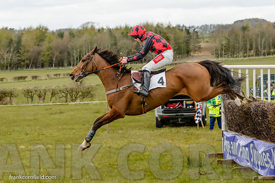 Elusive Classic jumping the last fence when winning The Rathbones Open Maiden Race at Balcormo Point-to-Point on 23 Apr 2016.