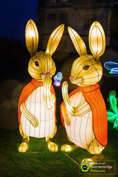 Longleat_Festival_of_Light-72