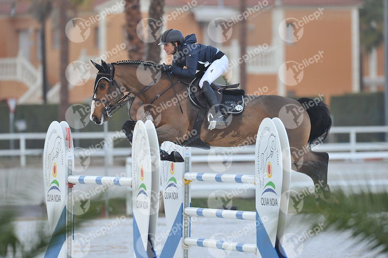 Oliva, Spain - 2018 January 28: Gold tour 1m40 during CSI Mediterranean Equestrian Tour 1..(photo: 1clicphoto.com I Herve Bon...