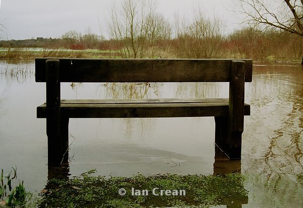 Bench in Flood