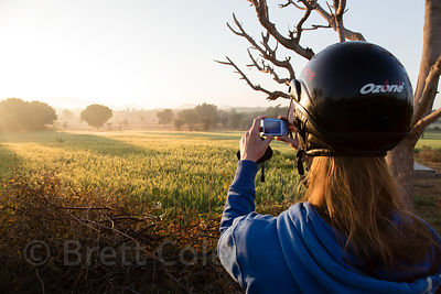 A woman takes a photo of a wheat field at sunrise, Bhagwanpura village, Rajasthan, India