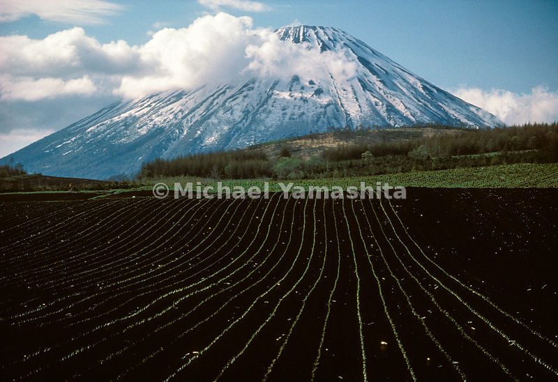 Winter holds fast to the corrugated slopes of Hokkaido's Mount Yotei even as spring unfurls below.