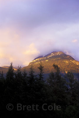 Delicate pinks and purple paint the sky and mountains of the Bella Coola Valley at dusk, Great Bear Rainforest, Nuxalk Territ...