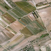 Crop Fields, Cagliari