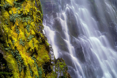 Water over mossy green rocks at Moon Falls, Umpqua National Forest, Oregon Cascades.
