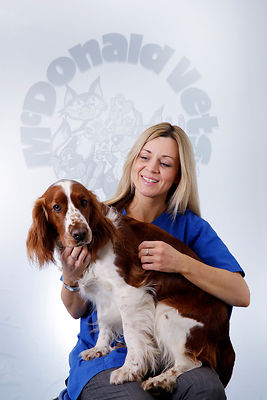 Staff and Pet photography..March / April 2015..For Sole Use By Pets n Vets, Glasgow..Free Use by Pets n Vets, Glasgow...Pictu...
