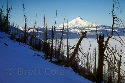 Mount Jefferson from Black Butte, Oregon Cascades.