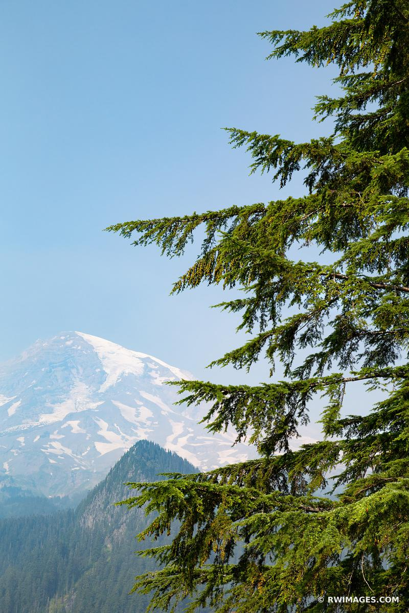 MOUNT RAINIER NATIONAL PARK WASHINGTON VERTICAL