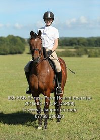 2016-09-11 KSB Scrase Farm Hound Exercise